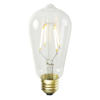 ST58 LED Light Bulb