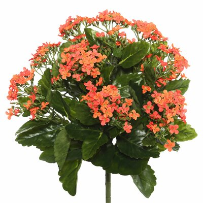 Polyester Kalanchoe Bush Floral Arrangement Flower Color: Orange