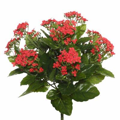 Polyester Kalanchoe Bush Floral Arrangement Flower Color: Red