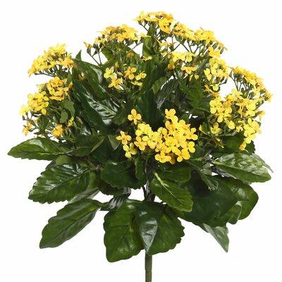 Polyester Kalanchoe Bush Floral Arrangement Flower Color: Yellow