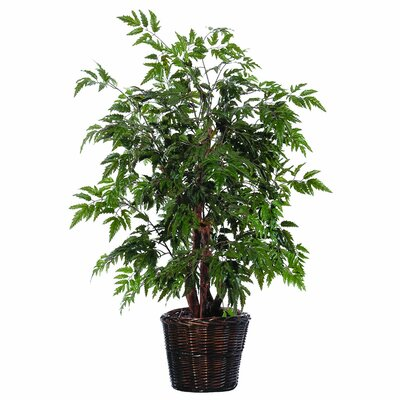 Artificial Potted Natural Ming Aralia Tree in Basket