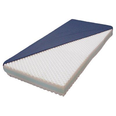 Multiple Density Foam Matress Size: 84 H x 48 W x 6 D