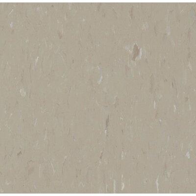 Alternatives 12 x 12 Luxury Vinyl Tile in Warm Stone