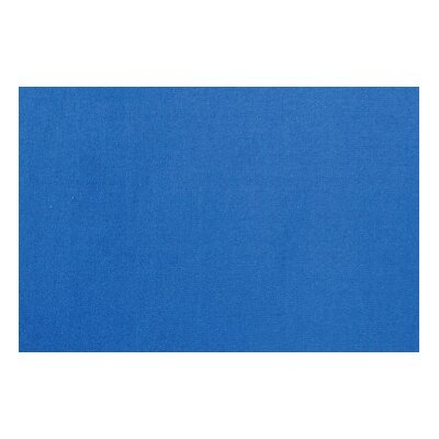 Fun Time Blue Kids Rug Rug Size: 2 x 27