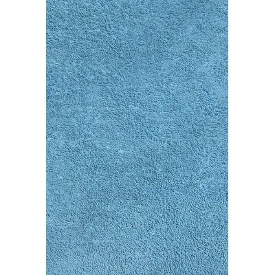 Light Blue Shag Kids Rug Rug Size: 43 x 66