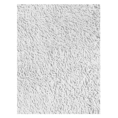 Fun Shag White Area Rug Rug Size: 33 x 410