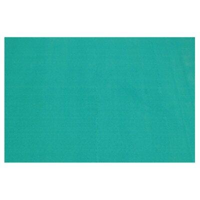 LA Kids Turquoise Area Rug Rug Size: 4'3
