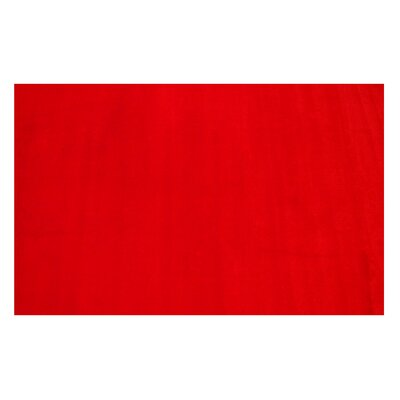 LA Kids Red Area Rug Rug Size: 4'3