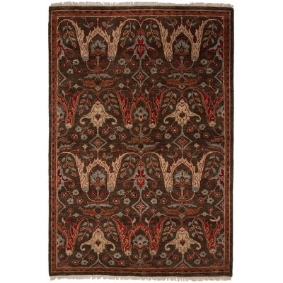 Tucson Hand-Woven Brown Area Rug Rug Size: 4 x 6