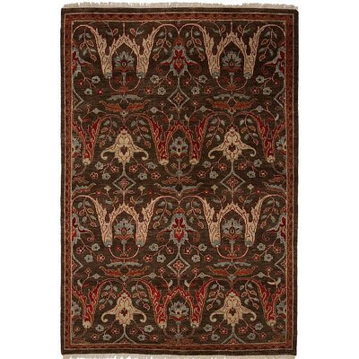 Tucson Hand-Knotted Brown Area Rug Rug Size: 6 x 9