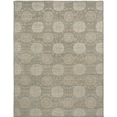 Alara Hand-Knotted Gray Area Rug Rug Size: 4 x 6