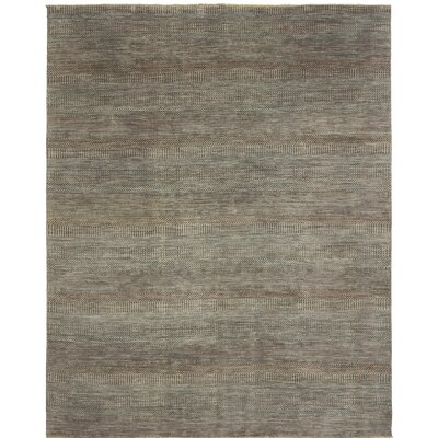 Illusions Hand-Knotted Gray Area Rug Rug Size: 8 x 10
