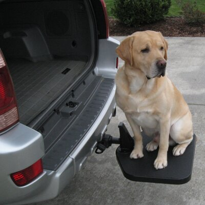 Dog Car Ramp Solutions Info