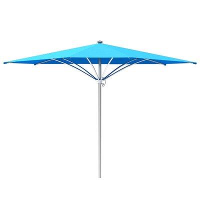 10 Trace Market Umbrella