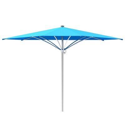 12 Trace Market Umbrella