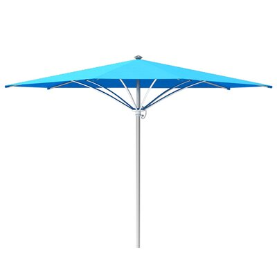 12 Trace Market Umbrella