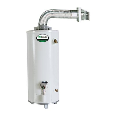 GDV-50 Water Heater Residential Nat Gas 50 Gal ProMax Direct Vent 42,000 BTU
