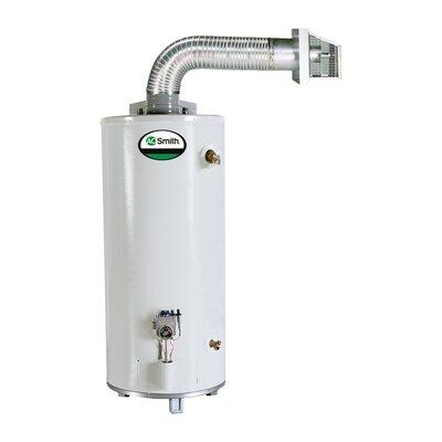 GDV-50 Water Heater Residential Nat Gas 50 Gal ProMax Direct Vent 42,000 BTU