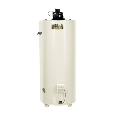 Commercial Tank Type Water Heater Nat Gas 74 Gal Conservationist Input Power Vent Single Flue