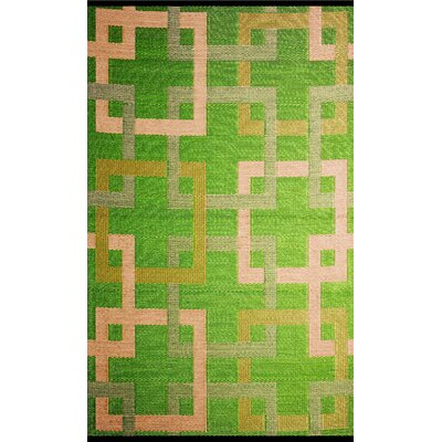 Square Reversible Green/Beige Outdoor Area Rug Rug Size: 4 x 6