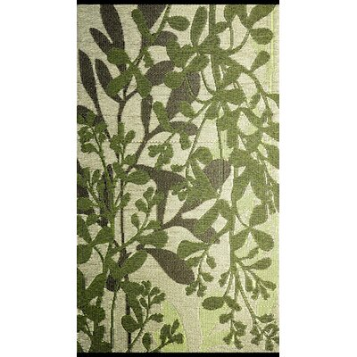 Frisco Reversible Green/Brown Outdoor Area Rug Rug Size: 4 x 6