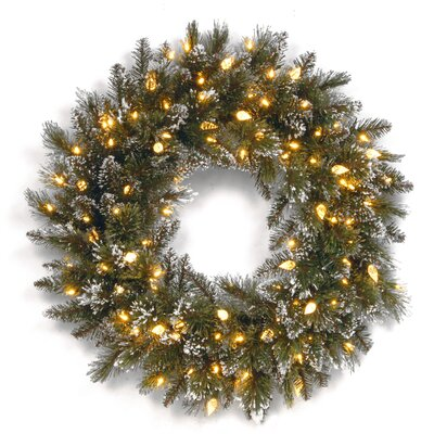 National Tree Co. Glittery Bristle Pine Pre-Lit Wreath with 50 Warm White LED Lights