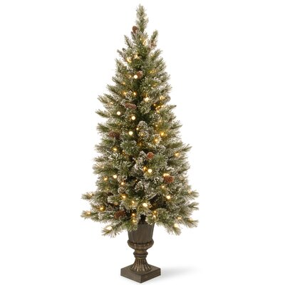Glittery Bristle Pine 4' Green Artificial Christmas Tree with LED Warm White Lights