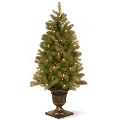 "Downswept Douglas 4.5"" Green Fir Artificial Christmas Tree with 100 Clear Lights with Pot"