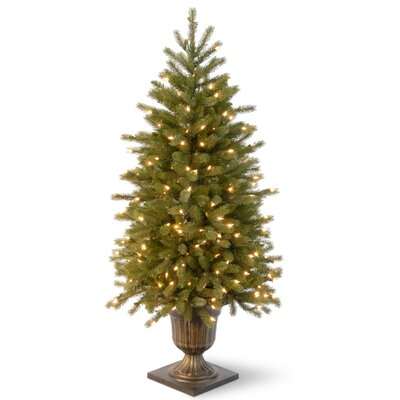 Jersey Fraser Fir 4' Green Entrance Artificial Christmas Tree with 100 Pre-Lit Clear Lights with Urn Base