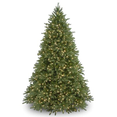 Jersey Fraser Fir 9' Green Artificial Christmas Tree with 1500 Clear Lights and Stand
