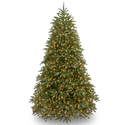 Jersey Fraser 7.5' Green Fir Artificial Christmas Tree with 1000 Warm White LED Lights Includes Stand