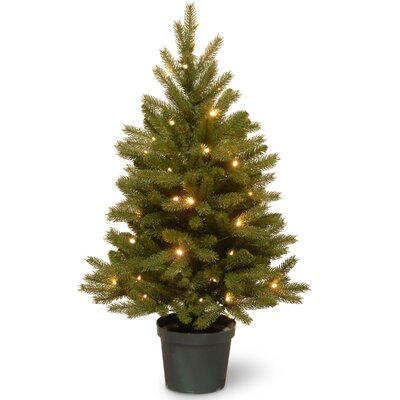 Jersey Fraser 3' Green Fir Artificial Christmas Tree with 35 Warm White LED Lights