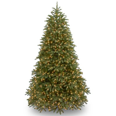 Jersey Fraser 7.5' Green Fir Artificial Christmas Tree with 1000 LED Multicolor