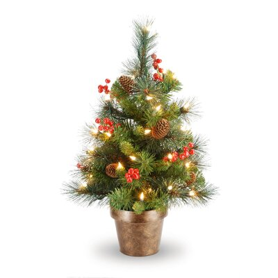 National Tree Co. Crestwood Spruce 2' Green Small Artificial Christmas Tree with Clear Lights at Sears.com
