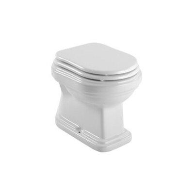 Old Antea 1.2 GPF Round Toilet Bowl