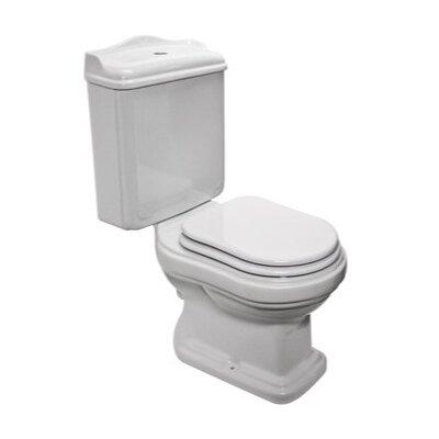 Old Antea 1.2 GPF Round Two-Piece Toilet