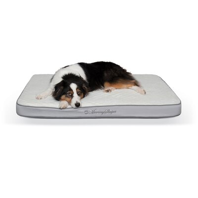 Memory Sleeper Pet Mat Size: Small (26 W x 18 D x 3.75 H)