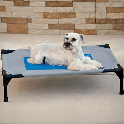 Coolin Pet Cot Size: Medium (32 W x 25 D x 7 H)