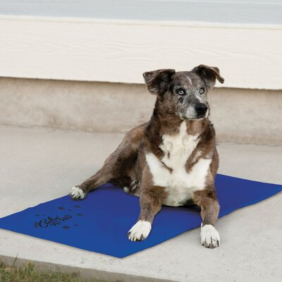 Coolin Pet Mat Size: Large (36 W x 20 D x 0.75 H)