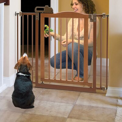 Richell 1-Touch Pressure Pet Gate Finish: Brown