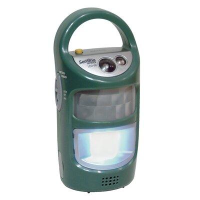 Sentina LED Emergency Light