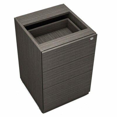 Burrillville 28.5  H x 22  W Desk File Pedestal