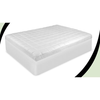 Luxury Euro Top Mattress Pad Size: Queen