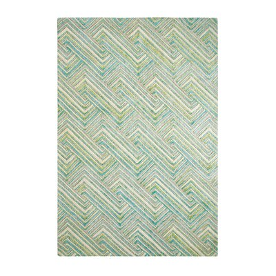 Echo Aqua Area Rug Rug Size: Rectangle 5 x 8