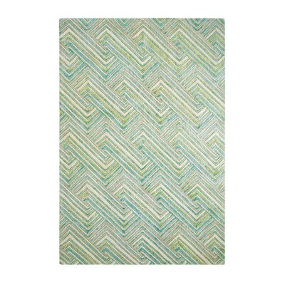 Echo Aqua Area Rug Rug Size: Rectangle 4' x 6'