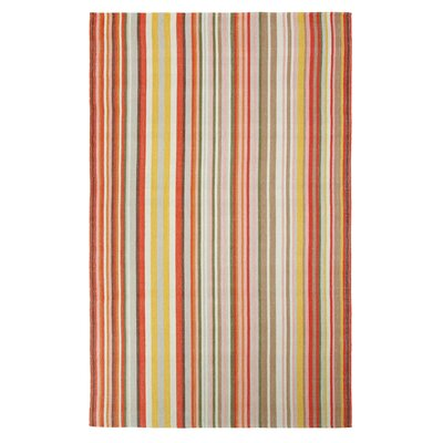 Martini Stripe Hand-Woven Coral Indoor/Outdoor Area Rug Rug Size: 5 x 8