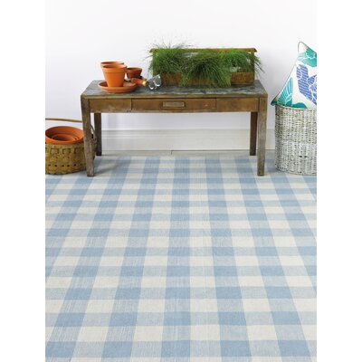 Check Please Hand Woven Blue Mist Indoor/Outdoor Area Rug Rug Size: 5 x 8