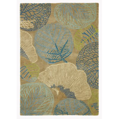 Monterey Lagoon Rug Rug Size: Rectangle 46 x 66