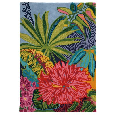 Captiva Green / Red Area Rug Rug Size: Rectangle 8 x 11