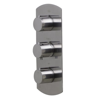 Concealed 3 Way Thermostatic Valve Shower Mixer Finish: Brushed Nickel
